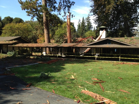 Post image for Tree at Vallombrosa Center in Menlo Park struck by lightening, building damaged