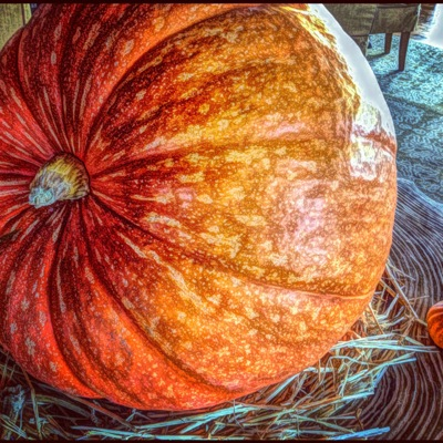 Spotted: Pumpkin bleeding Giants orange at Madera