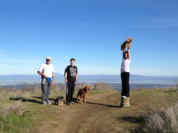 Windy Hill: Best hike within 15 minutes of downtown Menlo Park