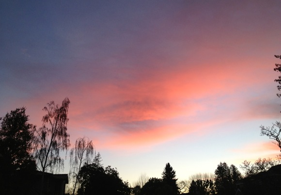 sunrise in Menlo Park on 01/10/13