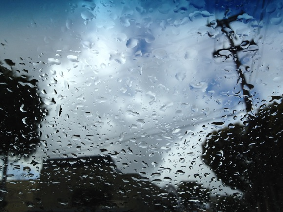 David Hibbard rain shot