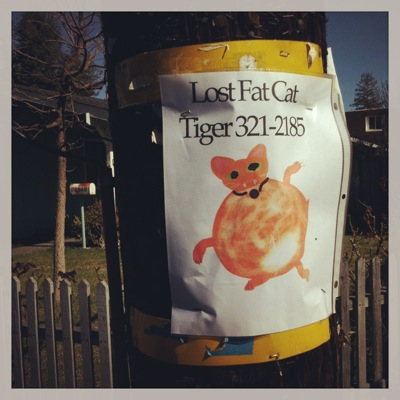 """Spotted: Poster for """"lost fat cat"""" in the Willows"""