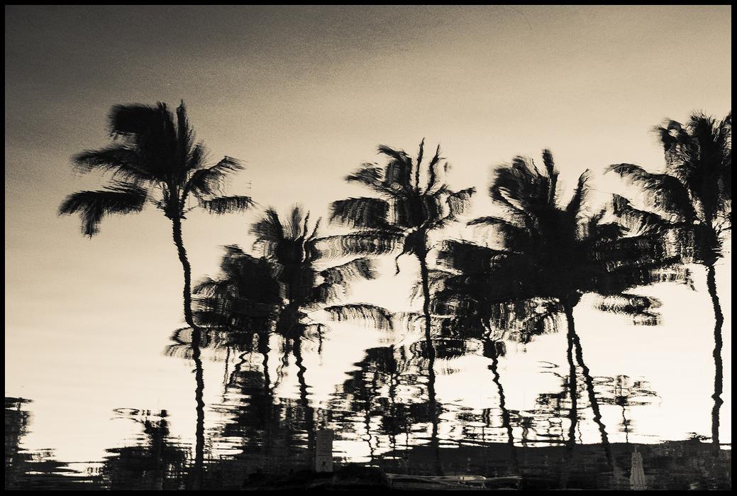 Infrared Shimmer - Hawaii - 2013