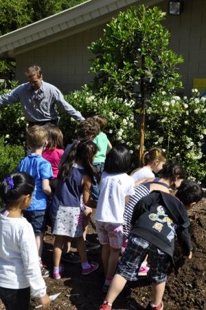 Menlo Park celebrates Arbor Day with tree planting at Laurel School