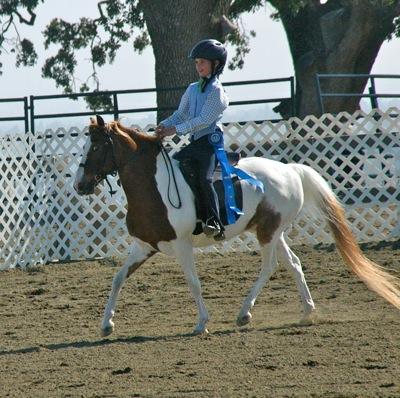 Katie_horse show
