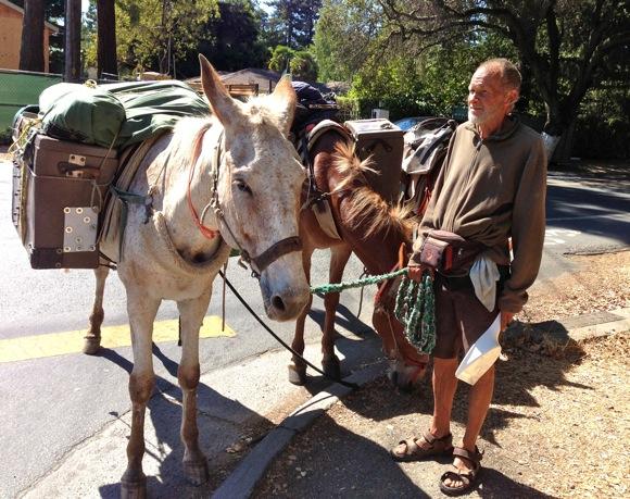 Mule train is new mode of transportation in Menlo Park