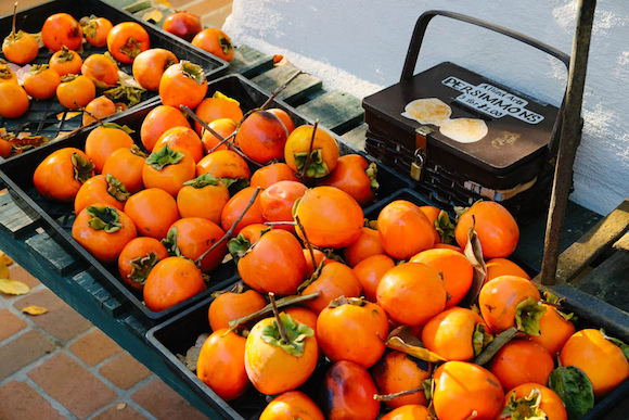 Persimmons at Menlo Park's Allied Arts Guild
