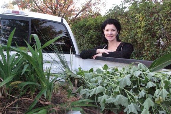 Laura Hawkins breathes new life into her backyard garden using recycled plants