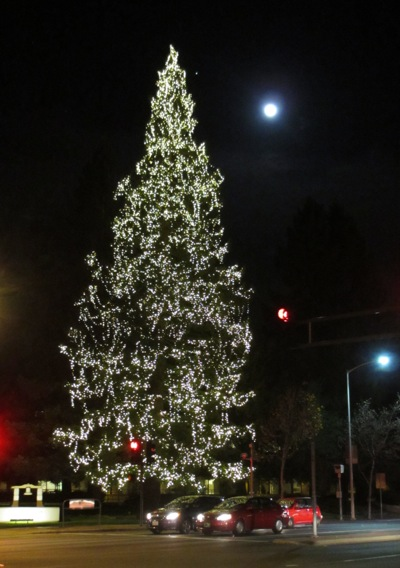 Spotted: Full moon over Menlo Park lighted holiday tree