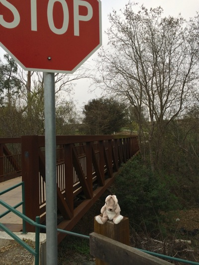 Post image for Spotted: Bunny guarding the bike/pedestrian bridge