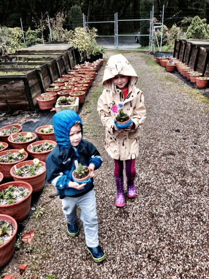James and Grace_weather at Filoli