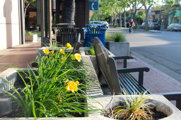 Post image for New planting boxes bring extra burst of Spring to downtown Menlo Park