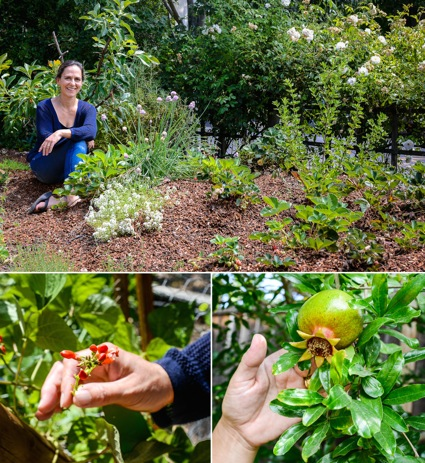 West Menlo Park home is on the Edible Landscaping tour on July 19