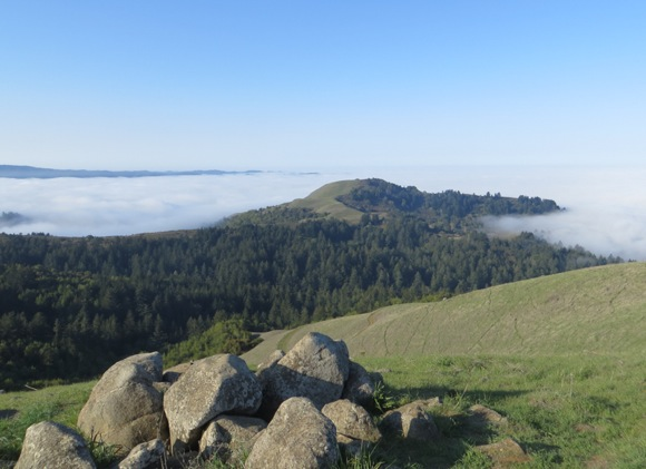 Find out why fog is one of Menlo Park's best friends at USGS lecture on July 31