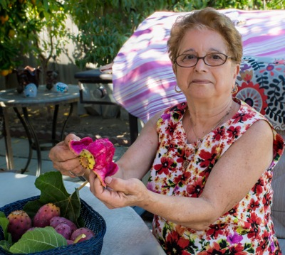 Connie Pasqua's blooming prickly pear cactus is a treat for all of Menlo to see