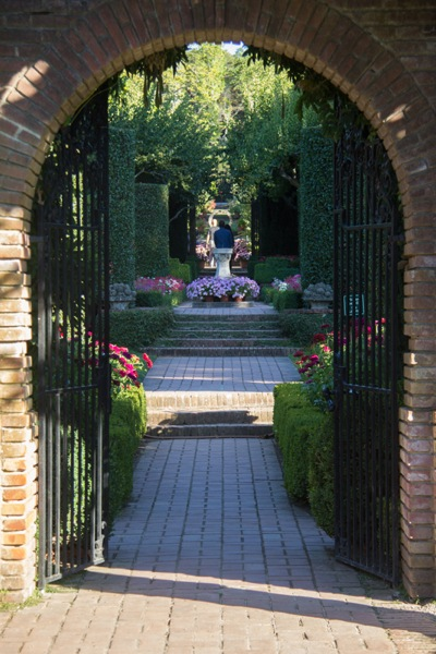 Filoli gardens sparkle in the twilight, captured by photographer Frances Freyberg