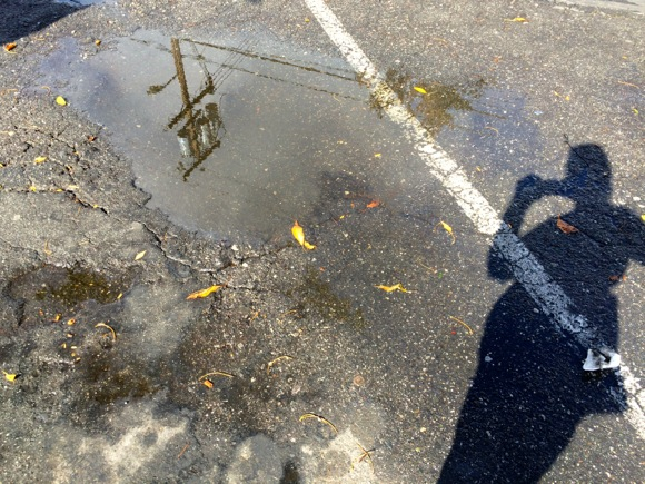 Post image for Real rain falls overnight on Menlo Park, giving way to sun mid-morning