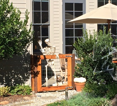 Post image for Spotted: Friendly skeleton and side kick dog in west Menlo