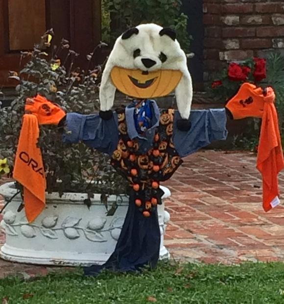 """""""Go Giants!"""" is message of Panda hat clad Halloween scarecrow in Menlo Park"""