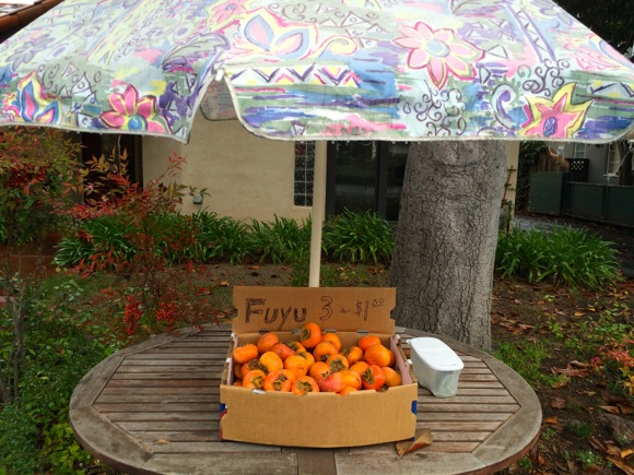 Post image for Spotted: Fuyu persimmons for sale on a rainy morning