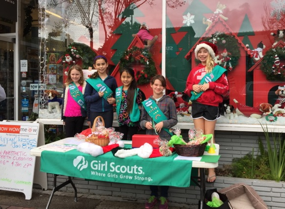 Girl Scout holiday project