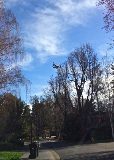 Post image for Spotted: Tiltrotor hovering above Menlo Park – in prep for President Obama's visit?