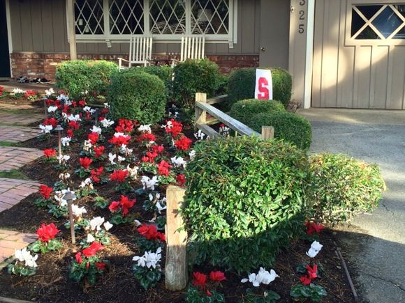 Post image for Spotted: West Menlo Park front yard shouting Happy Valentine's Day!