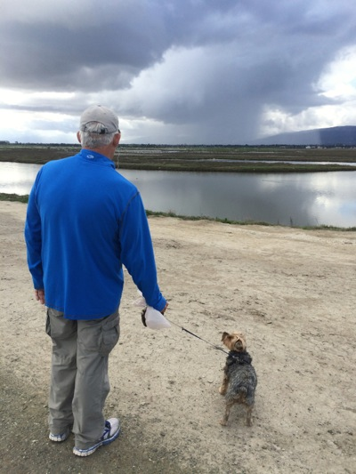 Some got rain, some got hail, some got nothing – all depends on where you live in Menlo Park