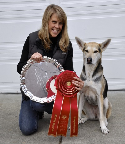 Post image for Stacey Campbell and Roo! shine at Westminster Kennel Club two years in a row