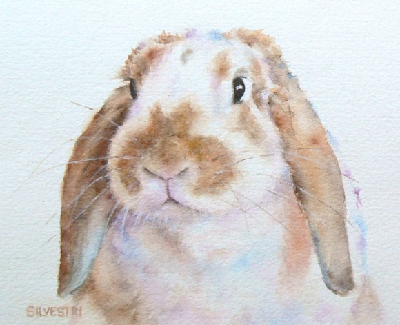 Post image for Teresa Silvestri's animal paintings and drawings featured at Portola Art Gallery in June