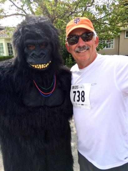 D and gorilla