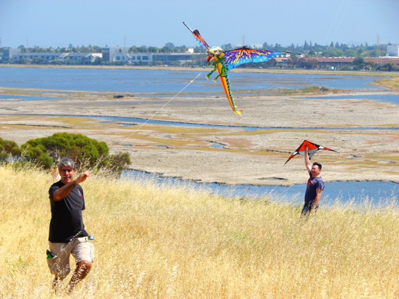 Post image for Hundreds enjoy Menlo Park's annual Kite Day