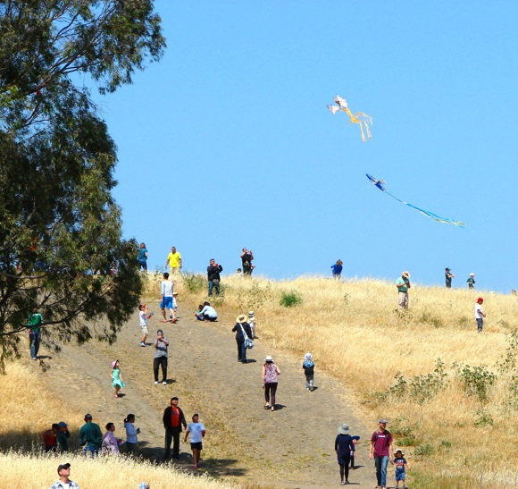 Kite Day in Menlo Park