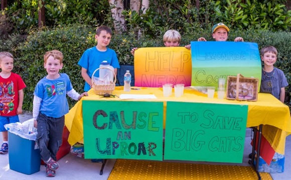 boys with lemonade stand