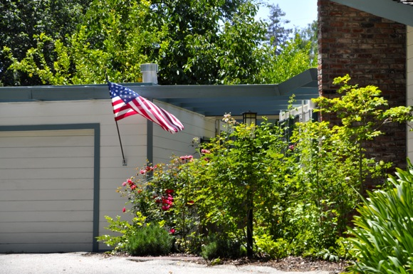 Star and stripes out in Menlo Park on Flag Day