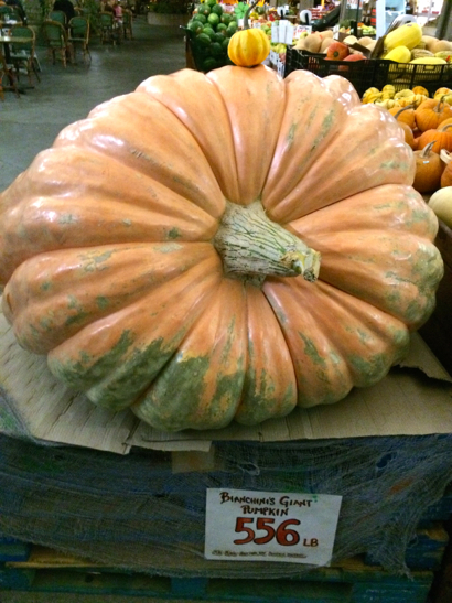 Post image for Spotted: Big and little pumpkins at Bianchini's in Ladera