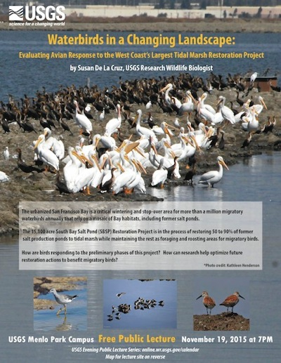 Post image for Waterbirds in a Changing Landscape is topic of USGS public lecture on Nov. 19