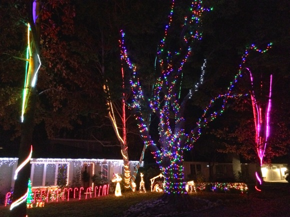 Post image for Spotted: A whole lot of Christmas on Hobart Street