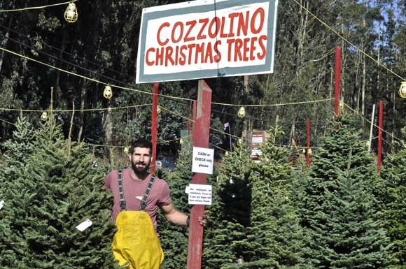 Post image for Buying a Christmas tree from the Cozzolino family takes on special meaning this holiday season