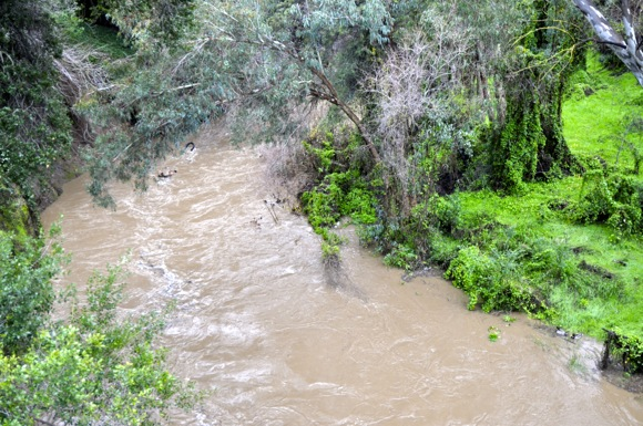 Post image for Local winter sport: Rafting on San Francisquito Creek caught on video!