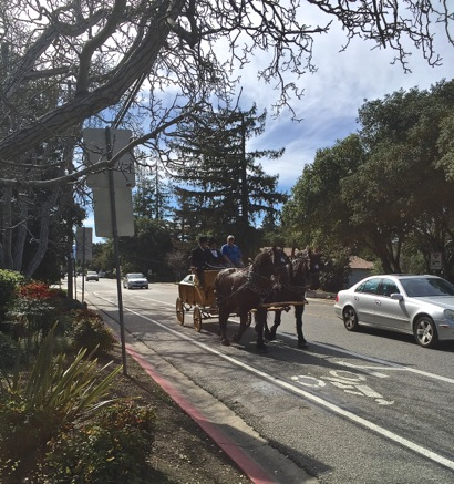 Post image for Spotted: Horse and buggy on Santa Cruz Avenue