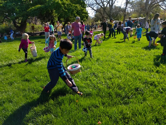 Post image for Happy egg hunting at Holbrook-Palmer Park in Atherton