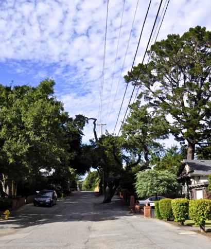 Hidden streets of Menlo Park: Croner Avenue