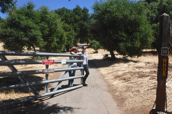 A visit to The Hawthorns, a bit of history hiding in plain sight in Portola Valley
