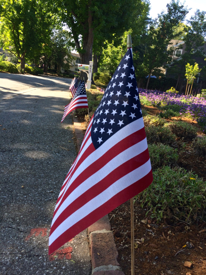 Post image for Spotted: Most patriotic front yard in Menlo Park
