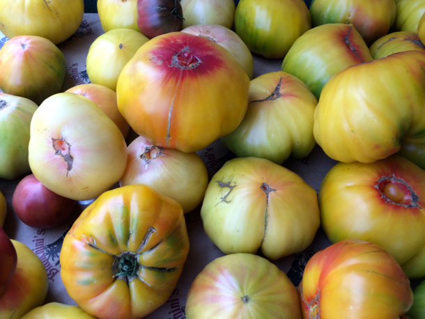 Post image for Spotted: Cantaloupe-sized tomatoes from Webb Ranch