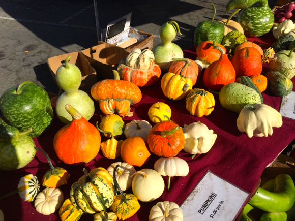 Post image for Feast of fall colors on display at the Menlo Park Farmers Market