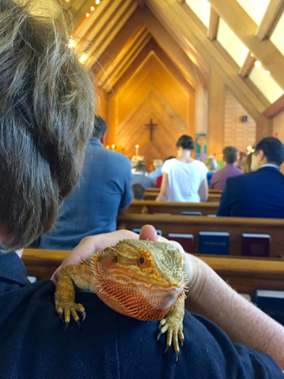 lady-lizard-in-pew-at-trinity