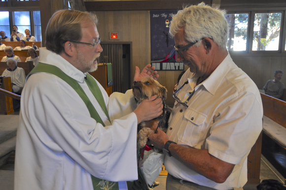 Animals are blessed at Trinity Church in Menlo Park