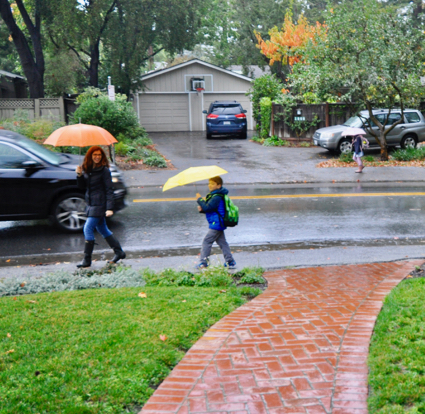 Post image for It's a rainy start to Friday in Menlo Park